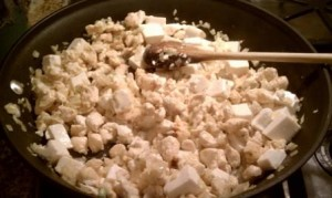 Garlic, onion, chicken, tofu and seasonings